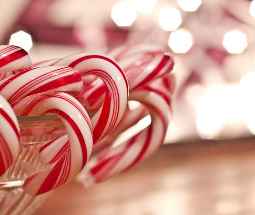 Candy Cane, Christmas